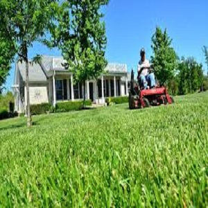 Landscaping Services With -CGS Facilities Management.